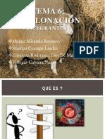 Clonacion PDF