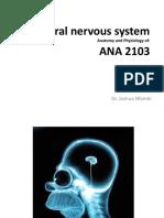 Central Nervous System OVL ANA 2103