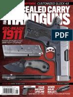 Concealed Carry Handguns 2018