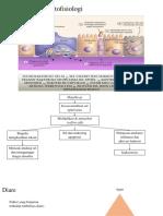 Patogenesis Dan Patofisiologi Diare Disentr Pia Ajijah-ppt
