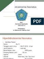 19612 440427 Dwi Ppt Hiperbilirubinemia