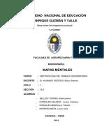 Modelo de Monografía 2