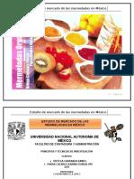 289689185 Estudio de Mermelada en Mexico Completo