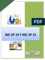 NIC SECTOR PUBLICO 19 Y 31