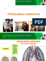 Problemas Cardiacos