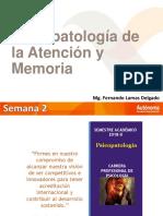 PSICOPATOLOGIA DE ATENCION Y MEMORIA