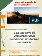 Características Del Proyecto de Producción Industrial