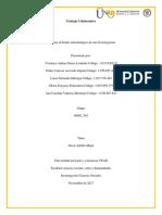 Elaborar El Diseño Metodológico de Una Investigación