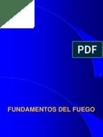 Fundamentos Del Fuego