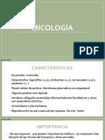 Micología 2018