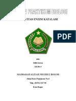 laporan_enzim.doc