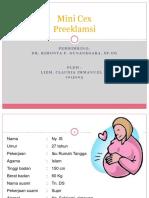 Mini cex dr Rimonta - PEB.pptx