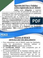 peace_m1_u2b_p2_pdf_seace.pdf