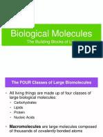 1. Biological Molecules