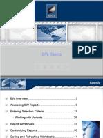Sap 102 - Bw Basics