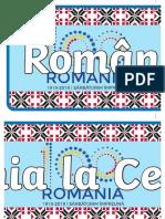 Romania La Centenar - Banner