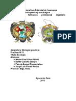Biologia Practica n.13