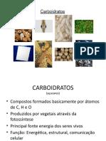SEMINARIO CARBOIDRATOS