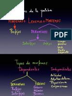 Copia de Lexemas y Morfemas