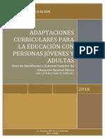 ADAPTACIONES-CURRICULARES-PCEI.pdf