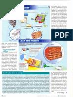 Fil. Particule Diesel