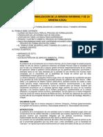 Proceso de Formalización de La Mineria Artesanal y Pequeña Minería