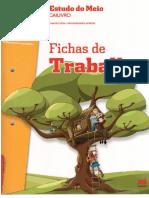Fichas-de-Trabalho-Estudo-Do-Meio-3-Ano.pdf