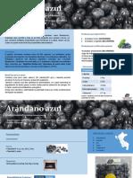FICHA-ARANDANOS-final.pdf