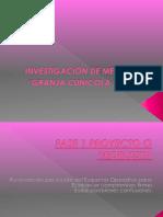 Informe Final Investigacion de Mercados Granja Cunicola
