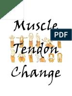 Muscle Tendon Change