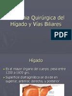 174631354 Anatomia Quirurgica Del Higado y Vias Biliares