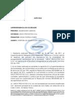 AUTO DE APERTURA.docx
