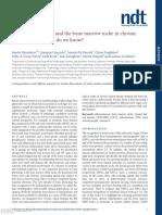 Bone, inflammation and the bone marrow niche in chronic kidney disease