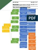 Estructura Organica Upma