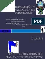 proyectos-cap-8.pdf