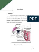 Anatomi Dan Fisiologi Traktus Uvea