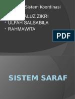 Kelompok Sistem Koordinasi