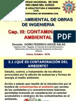 IA Cap3 Contaminacion Amb