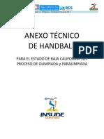 Anexo Tcnico Handball 2014