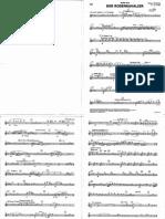 Piccolo - Flauta III