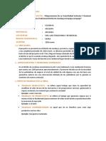 Informe Word Costos Nuñez