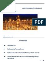 CAP I Petroquimica