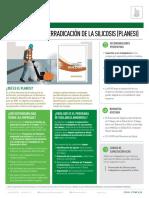 Ft_plan Nacional de Erradicación de La Silicosis (Planesi)