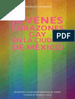 Jovenescorazonesdig.pdf