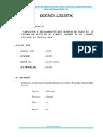 3.- Resumen Ejecutivo Centro de Salud-El Carmen