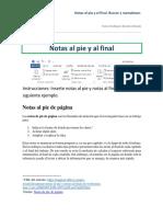 Notas Al Pie y Al Final