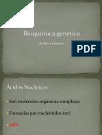 Tema 10 - Bioquímica Genética