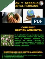 6 Gestión Ambiental y Derecho Ambiental Peruano.pdf