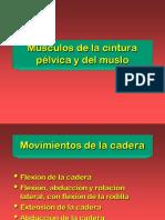 8. CP y Muslo