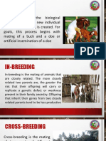 Goat Raising  online Seminar
